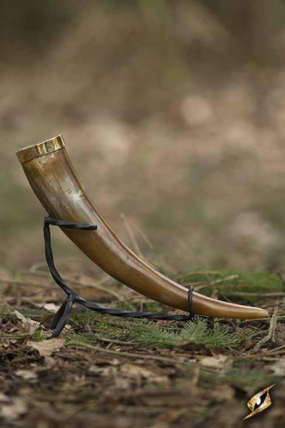 Warrior's Drinking Horn