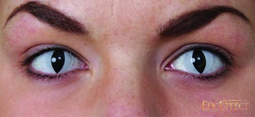 Black Cat Eye Lenses